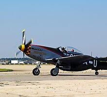 Ready for Take-off . . .  by Jelderkc