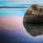 lake taupo at dawn by pieter van der walt