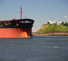DONG-A RHEA CARGO SHIP  by Phil Woodman