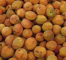 Peaches by Jo-Lou