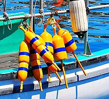 Yellow and Blue Buoys  by joevoz