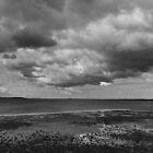 Stony Point Panorama 002 by Karl David Hill