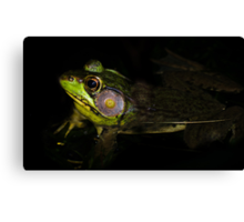 Frog in shade! Canvas Print
