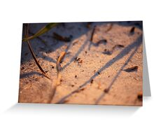 The Ants Go Marching One by One... Greeting Card