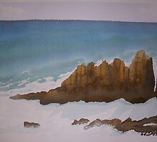 An afternoon view  of The Pinnacles, Phillip Island by taariqhassan