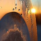 Sunrise Through Condensation by Christy Patino