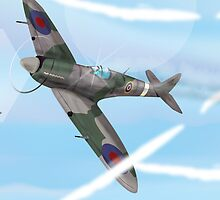 WW2 Vintage British fighter Aircraft by Nick  Greenaway