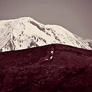 Mount St. Helens  by wowhannah