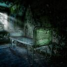 The Asylum Project - Seven by Erik Brede