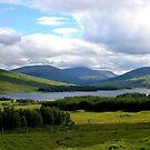 Ronnoch Moor by Don Rankin