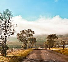 On a foggy cold winter's morning by HoaK
