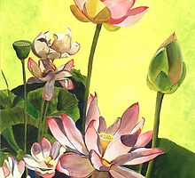 Citron Lotus 1 by Debbie DeWitt