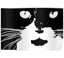 Cat Print/My Patch Abstract Graphic Cat Print Black and White - Jenny Meehan Design Poster