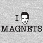 I Heart Magnets by Megatrip