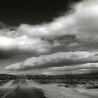 Mojave Road by Pauline Roupski