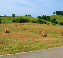 The Rolling Hills Of Kentucky by Ron Russell