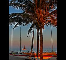 Ft. Lauderdale Sunset - - Posters & More by Maria A. Barnowl