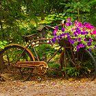 The Bike Stops Here - Niagara by Marilyn Cornwell