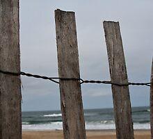 Ocean Through the Fence by EskimoKiss