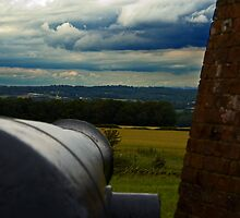 Cannons eye view by thermosoflask