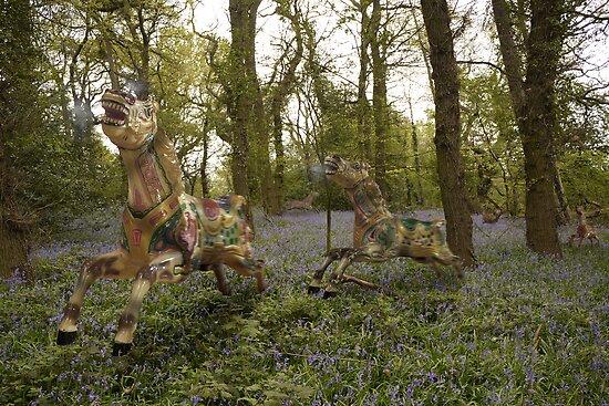 Wild Horses by Matt West