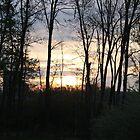 Sunrise on Bullittsville Rd by phrozenfotos