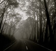 A Volatile Road by dher5