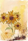 Sunflowers (Helianthus annuus) by Maree  Clarkson