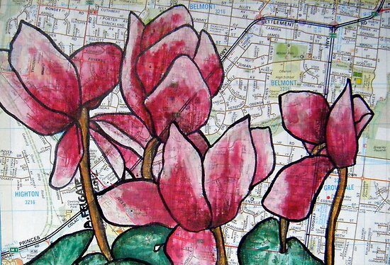 Cyclamen in the Suburbs by Alexandra Felgate