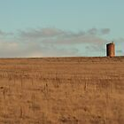 Lone Silo by Jennifer Saville