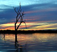 On Still Waters, Menindee lakes, NSW by Matt Harvey