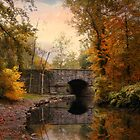 Stone Bridge by Jessica Jenney
