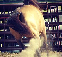 Buckskin Kicks Up Dust by angelandspot