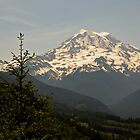 Mt Rainier from Evan's Creek by BH Neely