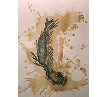 Last Bludgeoned Pup-Seal Photographic Print