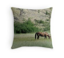 HORSE IN A MONTANA PASTURE Throw Pillow