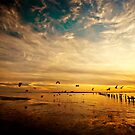 Low Tide Flight by Jonicool