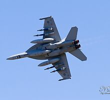 RAAF F/A18F Super Hornet (Rhino) 2 by Nigel Donald