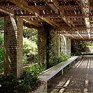 Pergola Inside the Garden Wall by SummerJade