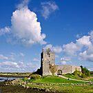 Dunguaire Castle by Michelle McMahon