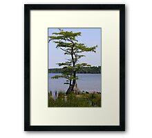 Inspiration Tree Framed Print