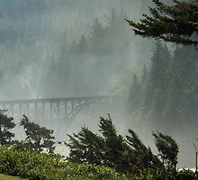 Misty Bridge at Heceta Head by James Eddy