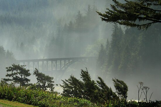 Misty Bridge at Heceta Head by James Eddy
