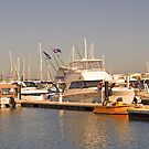 Dolphin Quay Boats by kalaryder