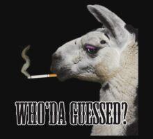 Smokin' Llama by StudlyMuffin