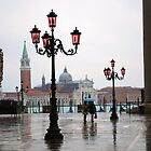 Venice after rain by Judy Barford