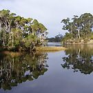 Inglis River, Wynyard. Tasmania by Esther's Art and Photography