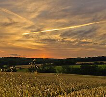 Dusk in Kent by JEZ22