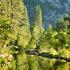 Merced River at Dawn - Yosemite National Park, California by Pete Paul