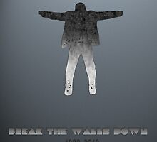 Break The Walls Down by Insecondsflat